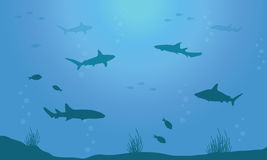 Silhouette of fish on blue sea background. Vector art Royalty Free Stock Photos