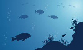 Silhouette of fish on blue sea beauty landscape. Vector art Royalty Free Stock Image