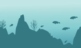 Silhouette of fish and coral landscape. Vector illustration Stock Image
