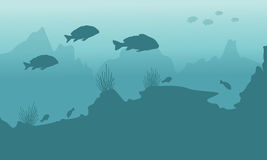 Silhouette of fish and coral reef underwater background. Vector Stock Photos