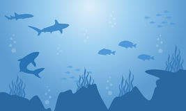 Silhouette of fish and shark on sea landscape. Vector art Stock Photos