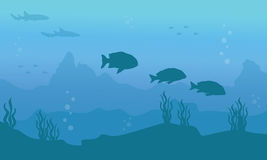 Silhouette of fish on underwater background. Vector art Royalty Free Stock Images