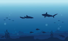 Silhouette of fish various background underwater. Vector art Stock Photos
