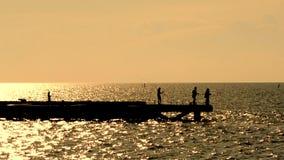 Silhouette of fisherman fishing on brigde stock video footage