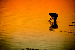 Silhouette of a fisherman in the river at sunset. The silhouette of a fisherman in the river at sunset Royalty Free Stock Image