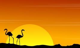 Silhouette of flamingo on orange sky landscape Stock Images