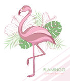 Silhouette of flamingos. Vector illustration. Flamingos and tropical plants. Stock Photo