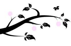 Silhouette fleurissante de branche de ressort Image stock