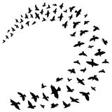Silhouette of a flock of birds. Black contours of flying birds. Flying pigeons. Tattoo. Silhouette of a flock of birds. Black contours of flying birds. Flying Royalty Free Stock Images