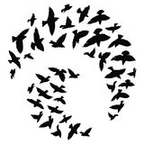 Silhouette of a flock of birds. Black contours of flying birds. Flying pigeons. Tattoo. Silhouette of a flock of birds. Black contours of flying birds. Flying Royalty Free Stock Photo