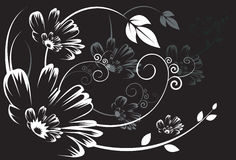 Silhouette of Floral designs. On black background Stock Photography