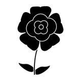 Silhouette flower flourish natural. Slihouette flower flourish natural illustration eps 10 vector illustration