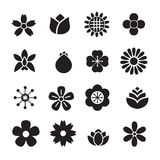 Silhouette Flower icons Stock Image