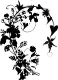 Silhouette of flower ornament Stock Images