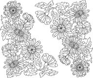 silhouette flowers coloring. Chrysanthemum flowers  drawing angular beautiful summer flowers on a white background, drawing the outline color without color Stock Photography