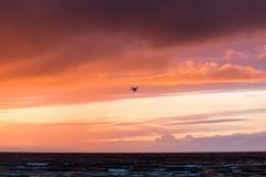 Flying drone over sea and cloud sky. Silhouette of a flying drone in clouds sky on a background of sea sunset royalty free stock photo