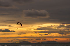 Silhouette of flying paramotor at sunset. Royalty Free Stock Photo