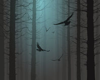 Silhouette of the forest with flying birds. Moonlight vector illustration