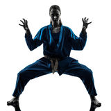 Silhouette för kvinna för Karatevietvodaokampsportar Arkivfoto