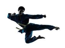 Silhouette för man för Karatevietvodaokampsportar Arkivbild