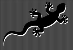 Silhouette of gecko Royalty Free Stock Images