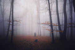 Silhouette of ghost in dark forest with fog on Halloween. In autumn Stock Photography
