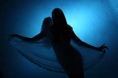 Silhouette of a girl. Angel Royalty Free Stock Image