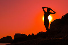 Silhouette of a girl. On the coastline on the sunset Stock Photography