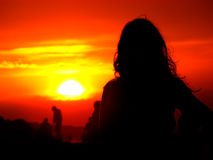 Silhouette of a girl on a background of a sunset Royalty Free Stock Image