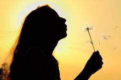 Silhouette of girl blowing to dandelion Stock Photo