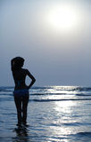 Silhouette of the girl and blue sunset. Girl is staying against blue sunset Royalty Free Stock Photo