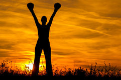 Silhouette of the girl with boxing gloves exercising. In the nature at sunset Stock Image