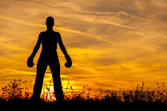 Silhouette of the girl in boxing gloves at sunset Royalty Free Stock Photos