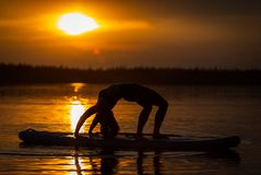 Silhouette of girl exercising yoga on SUP in the sunset on lake Velke Darko. Silhouette of beautiful young girl exercising yoga on SUP in the scenic yellow stock photography