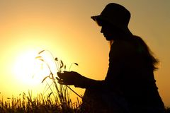Silhouette of a girl in field with ears Stock Image