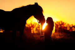 Silhouette of girl and horse. Beautiful silhouette of girl and horse at sunset Royalty Free Stock Photo