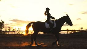 Silhouette of a girl riding a horse at sunset stock footage