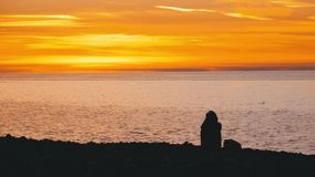 Silhouette of a Girl Sitting on the Beach at Sunset stock footage