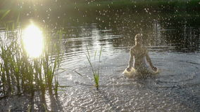 Silhouette of girl splashing water in pond at sunset stock video footage