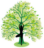 Tree yoga pose. Silhouette of girl, standing in tree yoga pose royalty free illustration