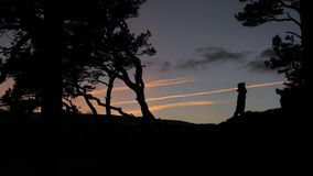 Silhouette of girl at sunset. In the woods stock footage