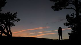 Silhouette of girl at sunset. In the woods stock video
