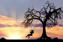 Silhouette of the girl on the swing. Near a tree at sunset Stock Photos