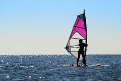 Silhouette of a girl windsurfer royalty free stock photo