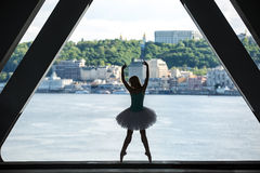 Silhouette of graceful ballerina in white tutu Stock Image