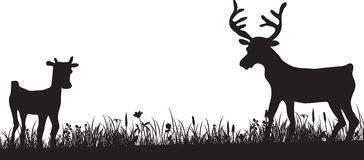 Silhouette of grass and deers Stock Photo