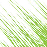 Silhouette of grass isolated on white background. Royalty Free Stock Photo