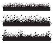 Silhouette of grass. Silhouettes of different herbs with flowers, white background Stock Photos