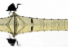 Silhouette grise de héron Images libres de droits