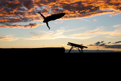 Gymnast on trampoline in sunset Stock Photos
